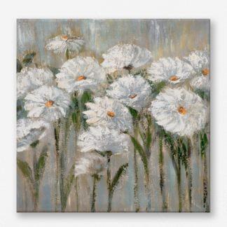 Hoa cúc trắng Daisy - Tranh canvas treo tường 50x50 cm