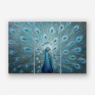 Bộ 3 tranh canvas Khổng Tước treo tường 30x60 cm/tranh