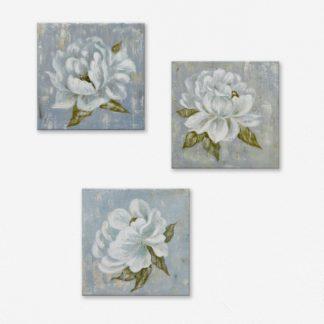 Bộ 3 tranh canvas treo tường Hoa Trắng
