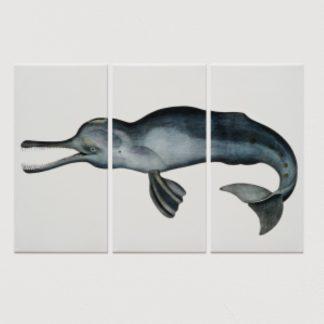 tranh-canvas-treo-tuong-ca-heo-Delphinus-capensis