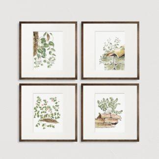 Bộ 4 tranh khung kính treo tường Small leaves