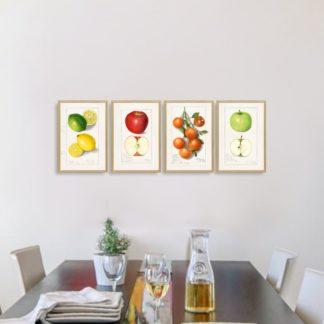 Bộ 4 tranh khung kính treo tường Colorful fruit 40x60 cm/tranh