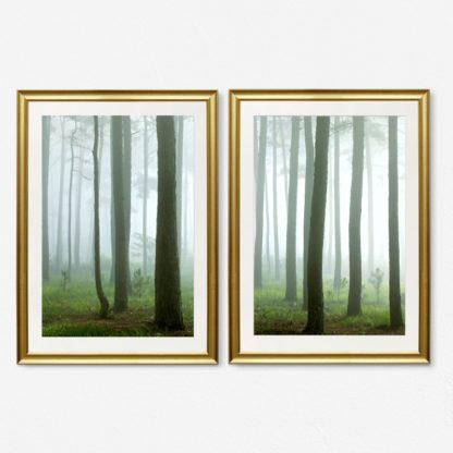 Bộ 2 tranh khung kính treo tường Rừng cây