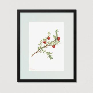 Bộ 3 tranh khung kính Ribes nigrum 40x50 cm/ tranh