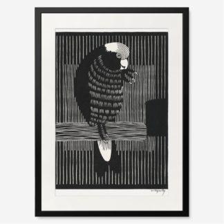 tranh-khung-kinh-treo-tuong-Galah-Cockatoos