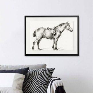 The horse - Tranh khung kính treo tường B&W