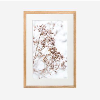Winter Flower - Tranh khung kính gỗ sồi treo tường 21x30cm