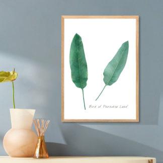 Poster Bird of paradise leaf