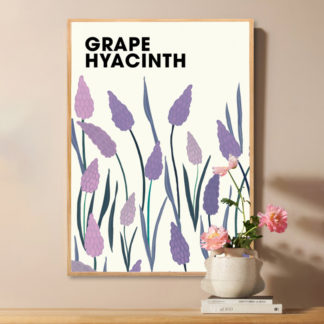 Poster Grape Hyacinth