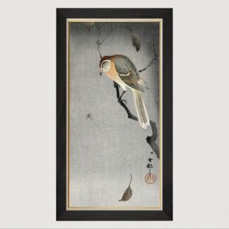 Buffalo wing shrike and spider (1900-1930) - Tranh in khung kính gỗ sồi Nhật cổ Danh họa Ohara Koson 50×100cm