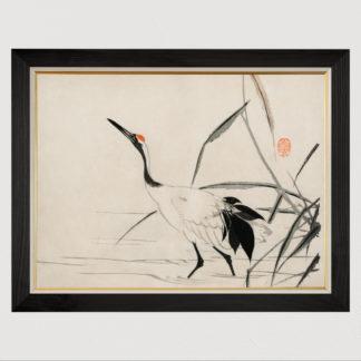 Japanese Crane - Tranh in khung kính gỗ sồi Nhật cổ Danh họa Mochizuki Gyokusen 60×80cm