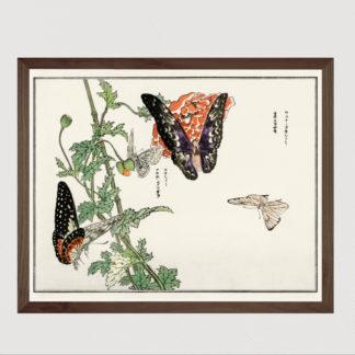 Butterflies and Plant (1910) - Tranh in khung kính gỗ sồi Nhật cổ Danh họa Mochizuki Gyokusen 56×45cm