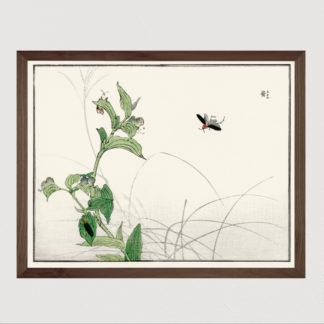 Fireflies - Tranh in khung kính gỗ sồi Nhật cổ Danh họa Morimoto Toko 56×45cm