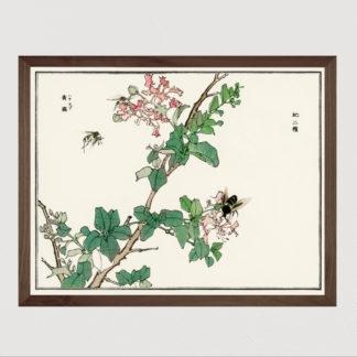 Horsefly - Tranh in khung kính gỗ sồi Nhật cổ Danh họa Morimoto Toko 56×45cm