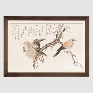 Kashidori Fukuro Tranh in khung kính gỗ sồi Nhật cổ Danh họa