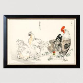 Domestic Fowl - Tranh in khung kính khung Hova